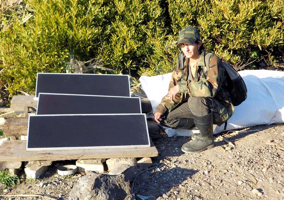 Solar panels and person