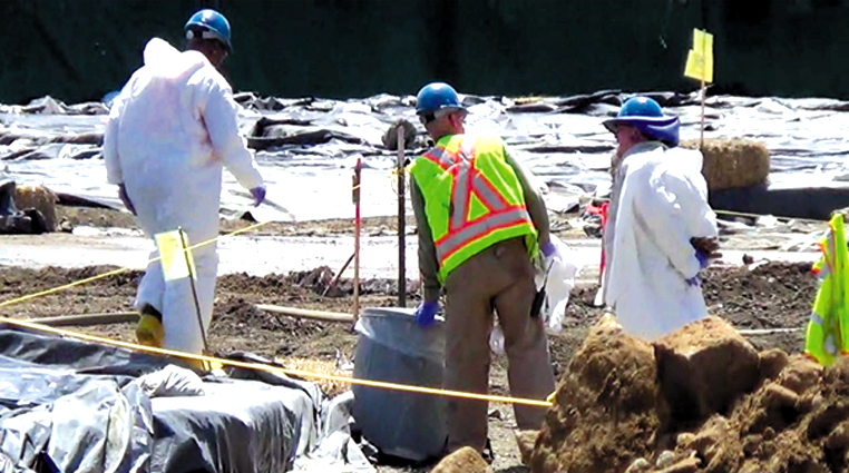 Workers in hazmat suits clean toxic chemicals at Treasure Island. Carol Harvey photo