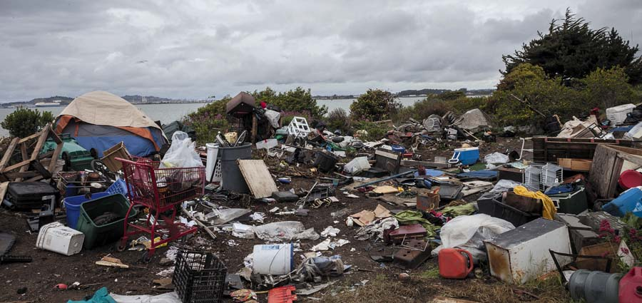 In April 2014, bulldozers squashed the homes and lives of over 60 residents living at the Albany Bulb. Robin Lasser photo