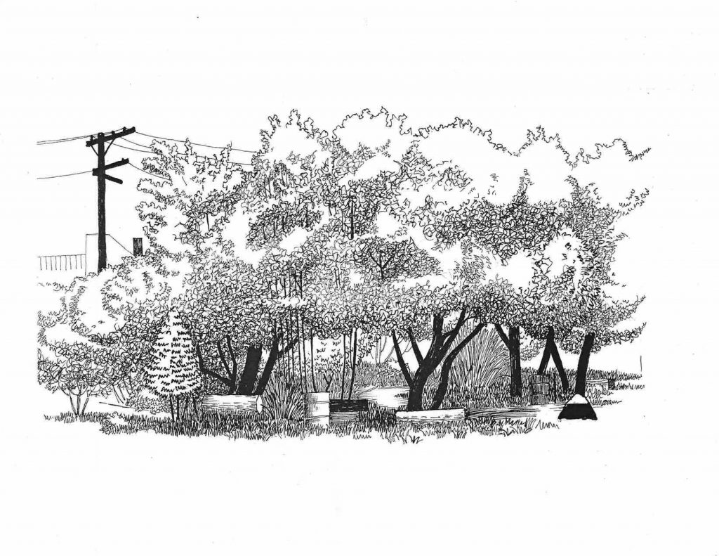 A drawing of a serene scene in the Park.
