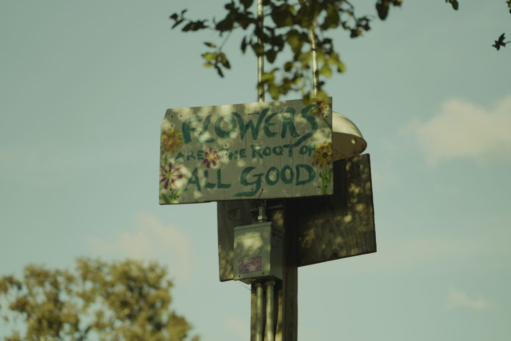 """A hand painted sign reads """"Flowers are the root of all good."""" The sunlight casts an elegant shadow on the sign."""