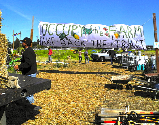 """A hand-painted banner decorated with images of vegetables reads, """"Occupy the farm, take back the tract"""""""